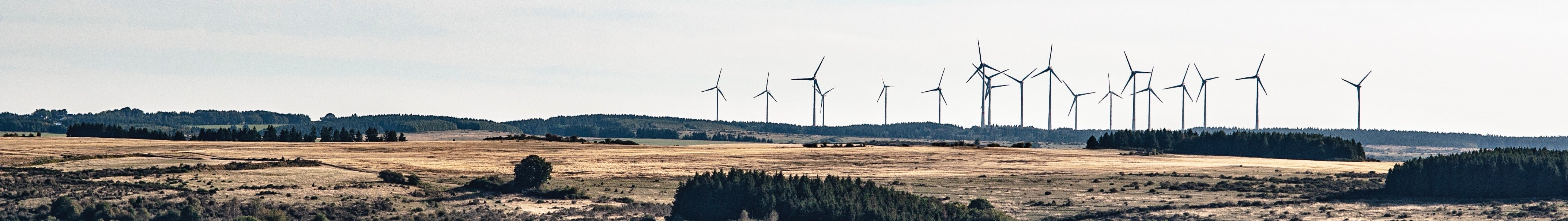 RFF-CMCC-EIEE webinar:  Green finance for a climate-resilient post-COVID-19 recovery